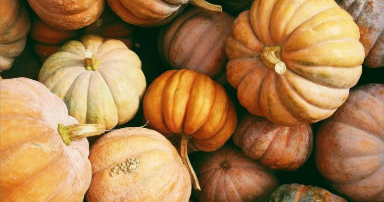 Make Pumpkin Seeds Part of Fall Tradition