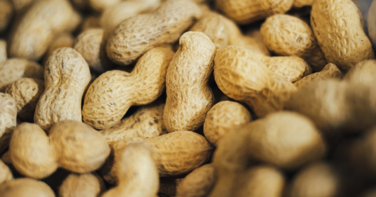 Study: Eating Peanuts During Childhood May Prevent Allergies