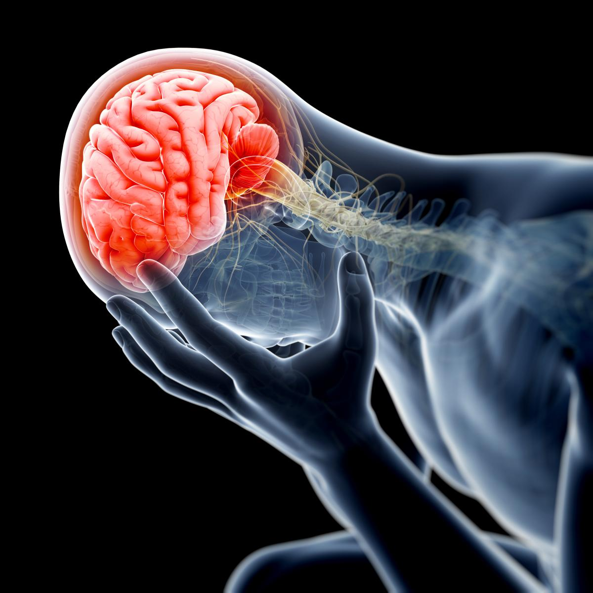 New Study Finds Link Between ADHD & Brain Injuries
