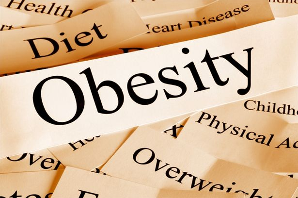 Obesity Rates for U.S. Women and Teens are on the Rise