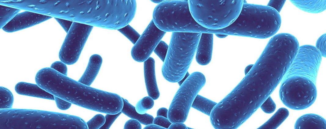 New Study: Lactobacilli Bacteria May Help Protect Breast Tissue
