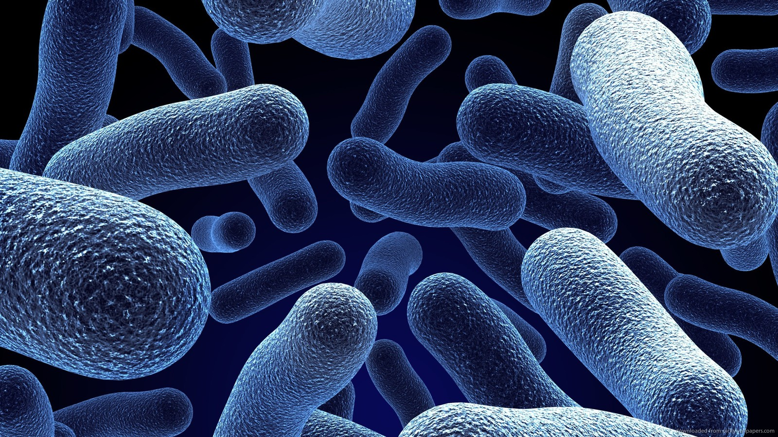 Probiotics for Healthy Individuals, Not Just Digestive Issues