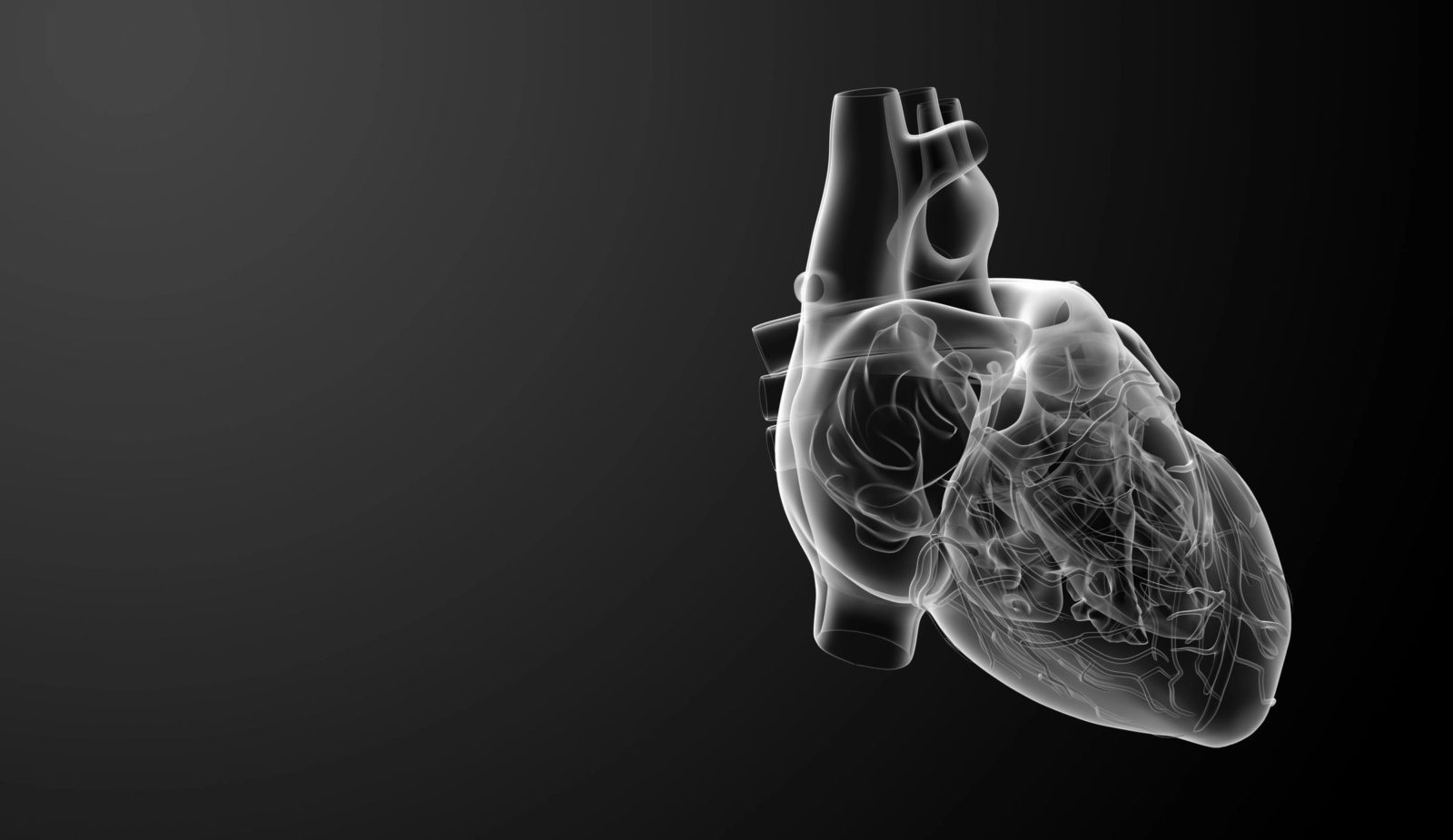Does Iron Provide Protection Against Heart Disease?